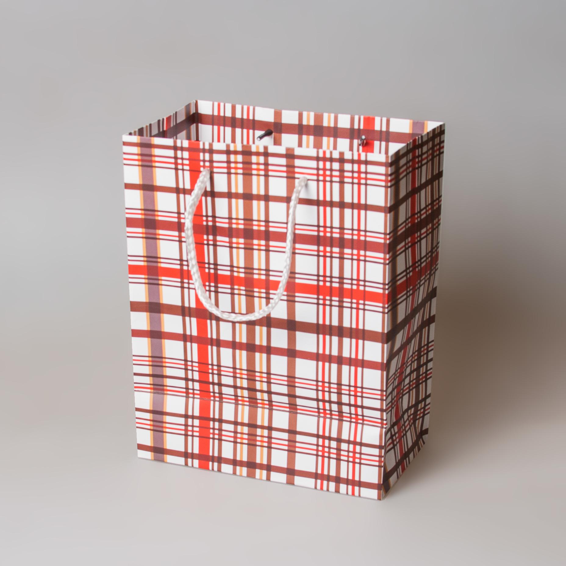Бумажный пакет с веревочными ручками 815472m
