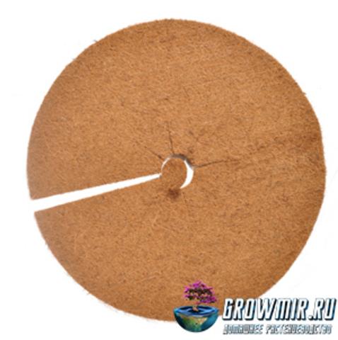 Кокосовый диск Ø 60см