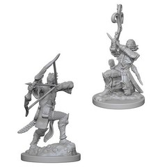 Nolzur's Marvelous Miniatures - Elf Male Bard