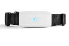 GPS ошейник для животных TK STAR TK911 водонепроницаемый