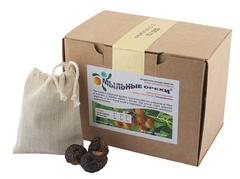 МЫЛЬНЫЕ ОРЕХИ  Trifoliatus, 500 гр + 2 мешочка для стирки