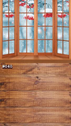Фотофон виниловый стена-пол «Рябина за окном» №040
