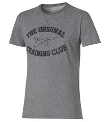 Мужская футболка Asics Graphic SS Top (125074 0773) серая