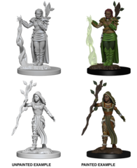 D&D Nolzur's Marvelous Miniatures - Human Female Druid