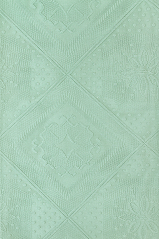 Наволочка декоративная 47х47 Luxberry Lana зеленая