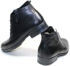 Качественные зимние ботинки мужские Ikoc 2678-1 S