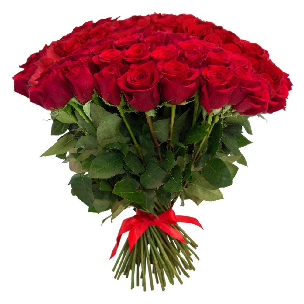 51 красная роза (60 см)