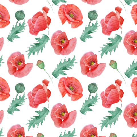 Seamless texture of red poppies on a white background.