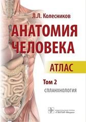 Анатомия человека. Атлас в 3 томах. Том 2. Спланхнология