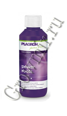 Plagron Power Roots 100 ml