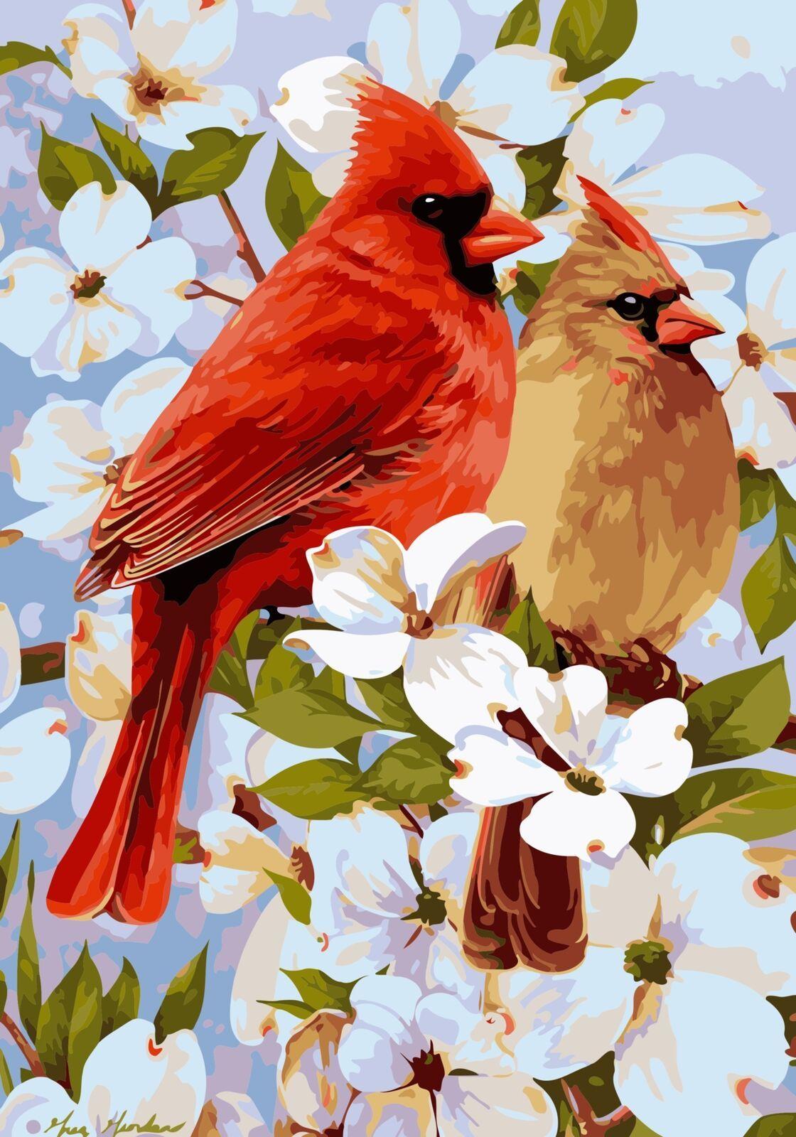 Картина раскраска по номерам 40x50 Птицы на ветке с белыми ...