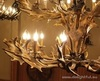 Люстра ROLL&HILL Superordinate Antler Chandelier - 4