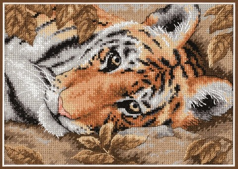 DMS-65056 Притягательный тигр