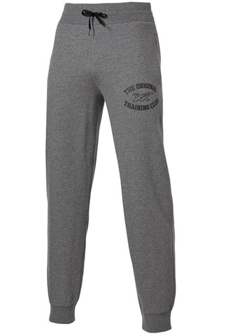 Спортивные штаны Asics Graphic Brushed Cuffed Pant мужские серые