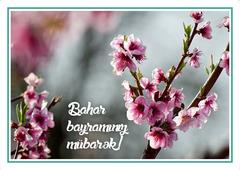 Açıqca (Открытки) Bahar bayramınız mübarək
