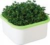 Выращиватель «Здоровья КЛАД» (для микрозелени)