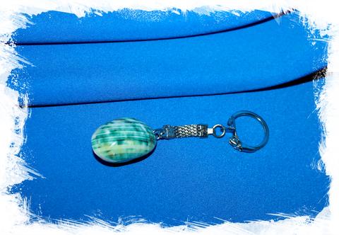 Брелок из спила ракушки Турбо зеленый