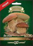 Белый гриб на зерновом субстрате