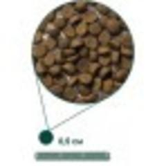 ARDEN GRANGE WEANING/PUPPY 6 кг
