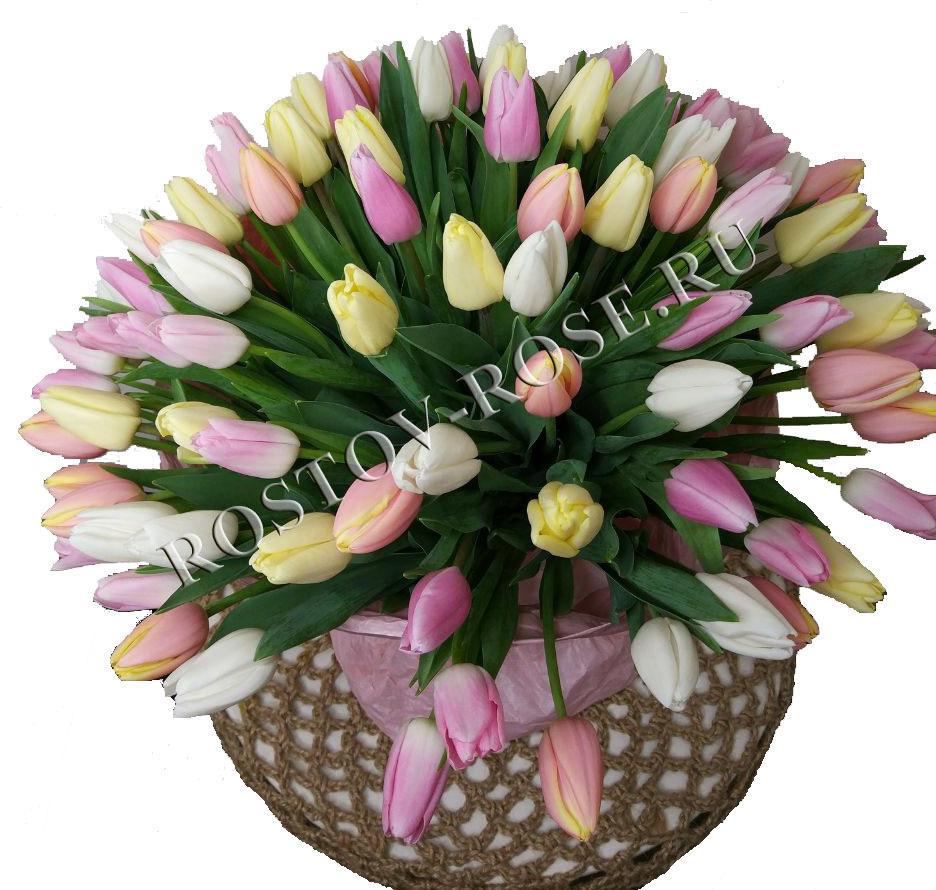 Букет из 101 белого, желтого и розового тюльпана