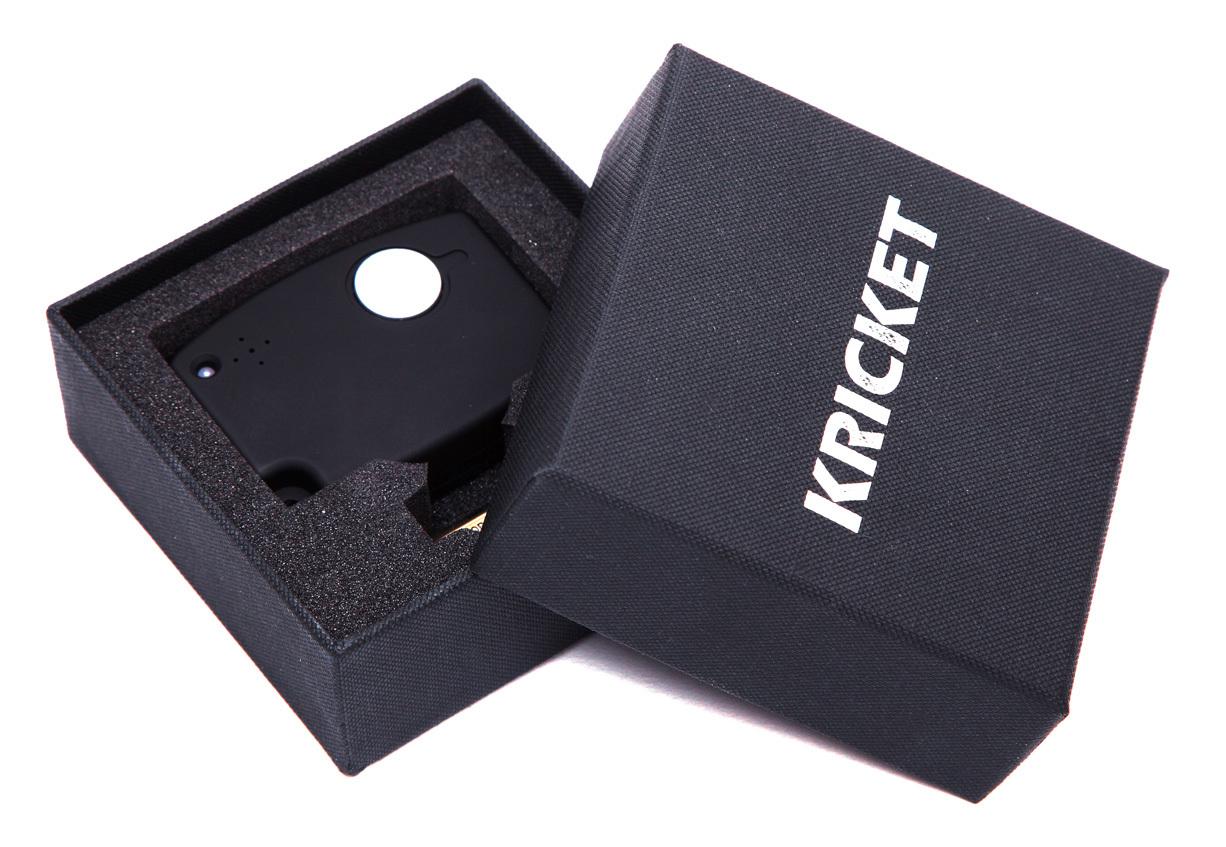 Антистокс-детектор для RUB и акцизных марок PRO KRICKET 004
