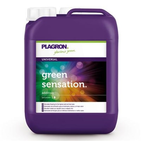 Green sensation 5 L