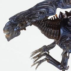 Чужие фигурка Королева Чужих — Alien Queen Sci-Fi Revoltech №018