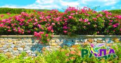"""Фотосетка """"Рада"""" для декора забора """"Каменный забор с цветами"""" 158х300 см."""