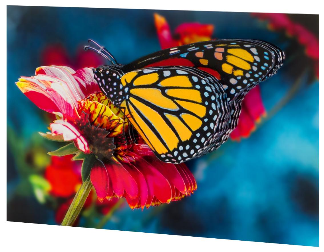 Папертоль Бабочка на гербере — готовая работа, вид сбоку.