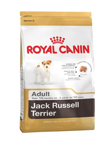 Royal Canin Jack Russel terrier