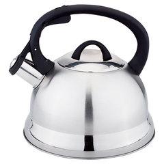Чайник со свистком 2,5л Webber BE-0554 сатин + зеркальный