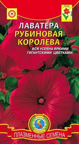 Семена Цветы Лаватера Рубин