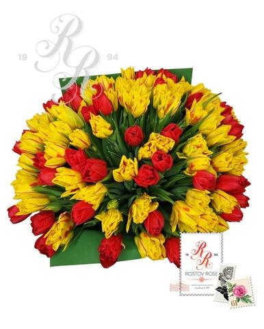51 Пионовидный тюльпан красно-желтый микс