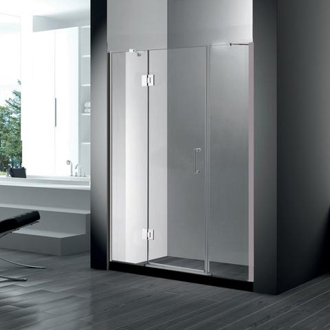 Душевая дверь RGW HO-03