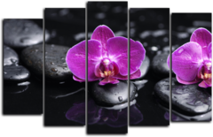 "Модульная картина ""Орхидея на камнях"""