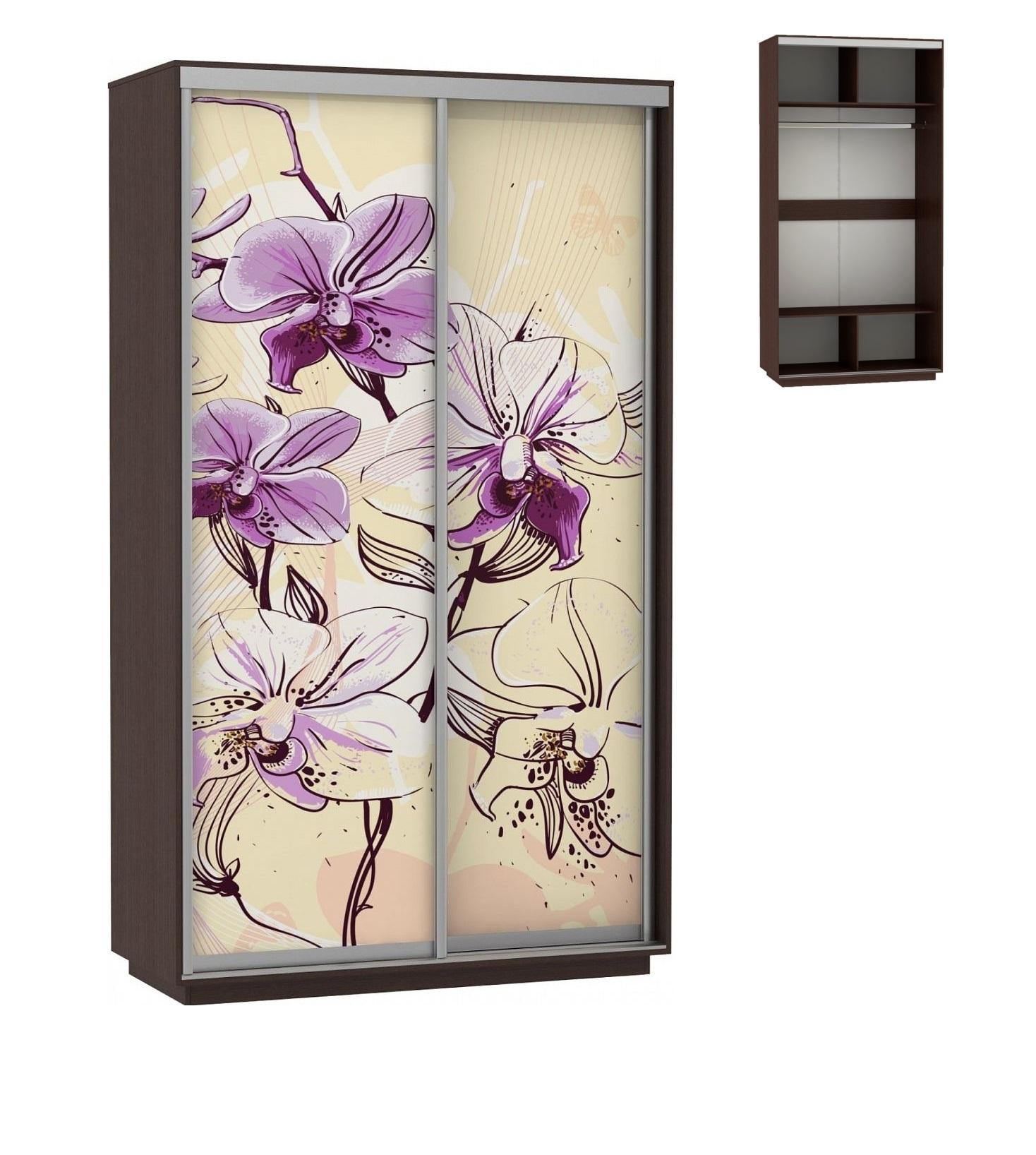 шкаф купе двухстворчатый хит фотопечать цветы E1 венге в раменском