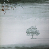Genesis / Wind And Wuthering (LP)