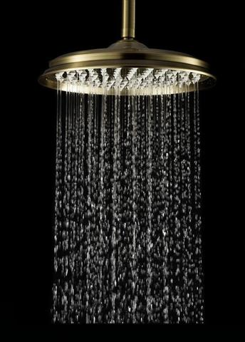 Лейка душевая Elghansa SHOWER HEAD CD-260-Bronze, бронза