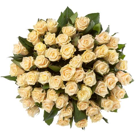 Букет из 51 кремовой розы (60 см)