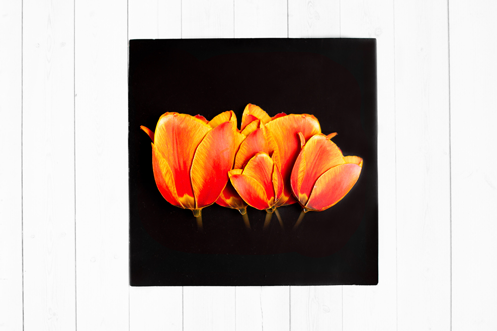 Солнечные тюльпаны- готовая работа, фронтальный вид.