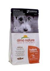Корм для взрослых собак малых пород, Almo Nature Small&Salmon, с лососем