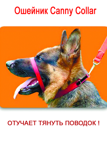 Ошейник Canny Collar- сдерживающий тянущую собаку