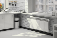 Радиатор биметаллический Royal Thermo Biliner Bianco Traffico (белый)  - 6 секций