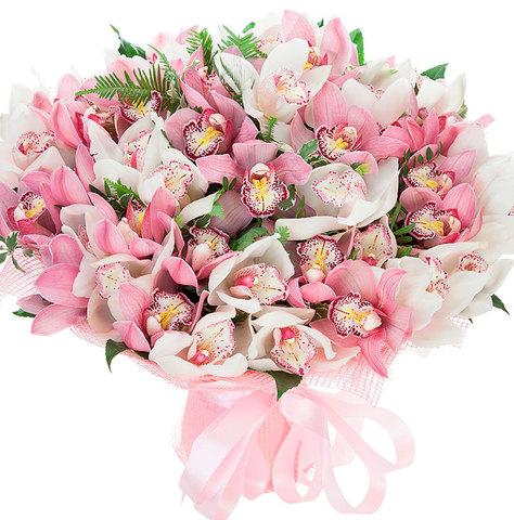 Букет из 51 орхидеи