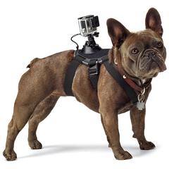 Крепление-упряжка для собак GoPro Fetch Dog Harness (ADOGM-001)