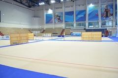 Соревновательный ковер для художественной гимнастики, размер 14х14м. толщина 10мм.