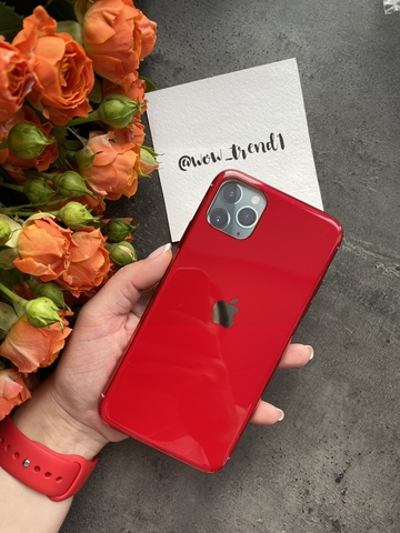 Чехол iPhone 11 Pro Glass Silicone Case Logo /red/
