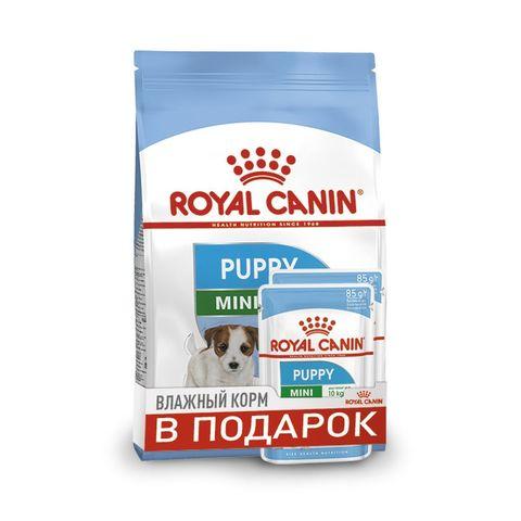 ПРОМО! Royal Canin Puppy Mini сухой корм для щенков мелких пород 2 кг + пауч