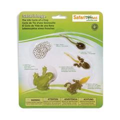 Набор фигурок Жизненный цикл лягушки, Safari Ltd.