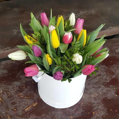Коробка с тюльпанами 5